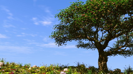Summer tree on sunny hill.