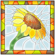 Vector illustration of flower sunflower.