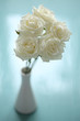 elegant bouquet of white roses in vase on turquoise background