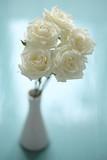 elegant bouquet of white roses in vase on turquoise background