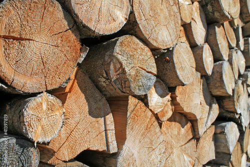 logs cut a huge outdoor summer Woodshed
