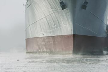 Bug eines Schiffes in Hamburg und zwei Enten