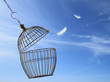Freedom concept. Escaping from the cage.