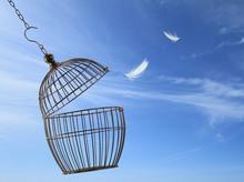 "Постер, картина, фотообои ""Freedom concept. Escaping from the cage."""