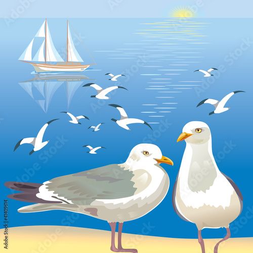 Seascape with seagulls