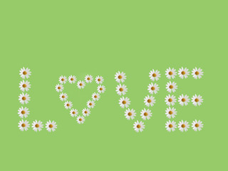 Wort Love aus Margariten Blüten 1