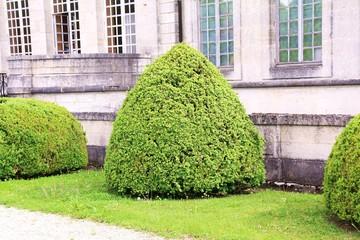 Jardin, château, buisson taillés entretien