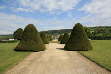 Jardin, château, buisson taillés entretien arbre