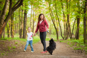 Mother and child walking in forest and playing with dog