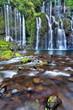 Résurgences et cascades à la rivière Langevin, La Réunion.