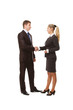Business people's handshake