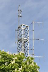 Antenna trasmittente camuffata