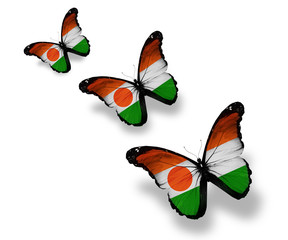 Three Niger flag butterflies, isolated on white