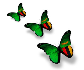 Three Zambia flag butterflies, isolated on white