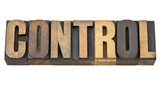control word in wood type poster