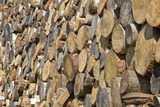 Big woodpile from logs poster