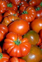Amncellement de tomates