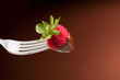 Fork with strawberry and chocolate