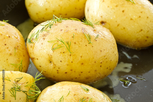 young boiled potatoes