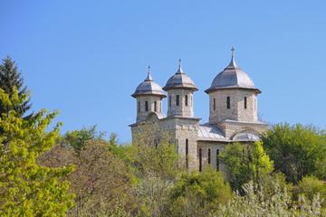 The Orthodox White Church of Alun, Hunedoara, Romania