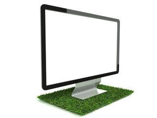 Monitor on grass left side view