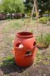 plastic composter in garden