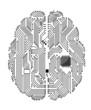 Motherboard brain - 41468474