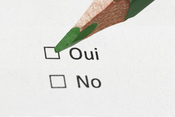french questionnaire yes or not