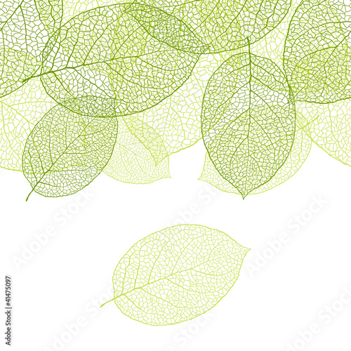 Fresh green leaves background - vector illustration © incomible