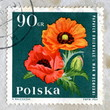 "Canceled stamp of Poland ""Oriental poppy"""