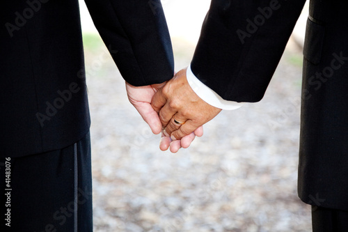 Gay Marriage - Holding Hands Closeup