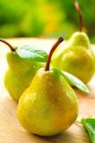 Frisch gepflückte Birnen