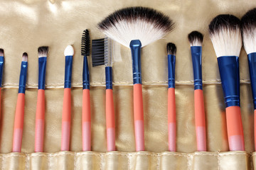 Set of make-up brushes in golden leather case close up