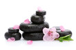 Spa stones with drops and pink sakura flowers isolated on