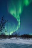 Fototapety Aurora Borealis in Sweden