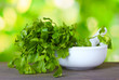 Coriander in a mortar and pestle on green background