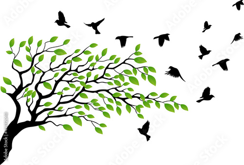 Tree with bird flying - 41492040