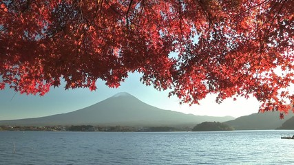 Mt.Fuji and Autumnal leaves in Kawaguchi Lake,Yamanashi,Japan