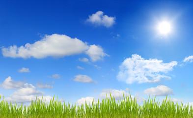Panorama of sky sun and grass