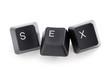 internet or cyber sex