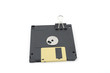 Floppy disc for computer and clip