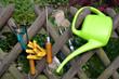 Pflanzen Garten Werkzeug