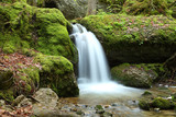 Wasserfall im Moos