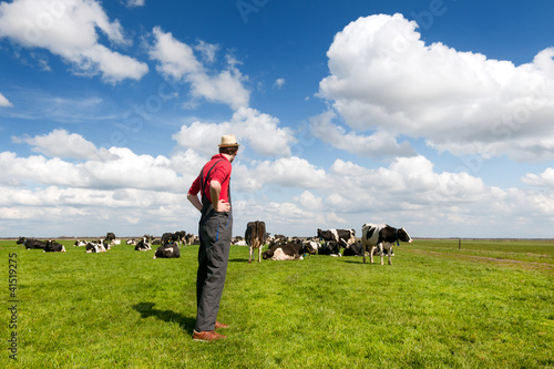 Typical Dutch landscape with farmer and cows