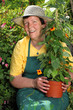 Senior woman gardener