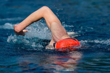 Schwimmer im Wettkampf