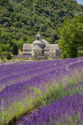 Abbaye de SèmAbbaye de Sèmamque Francia © Pixelshop