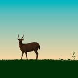 Deer on green nature and Save Wildlife 2