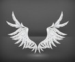 Wings White, vector