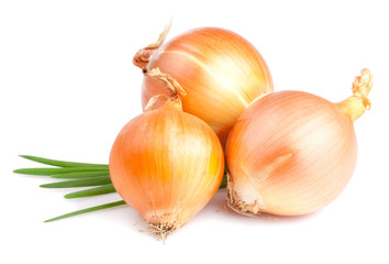 Three Fresh bulbs of onion and Fresh Scallions isolated on a whi